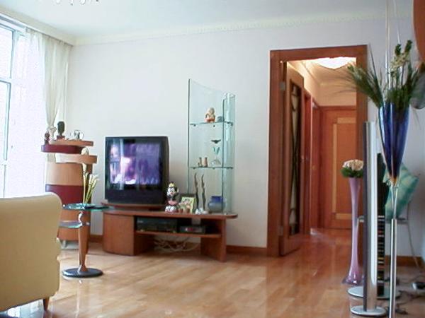 平房四室一厅设计图展示